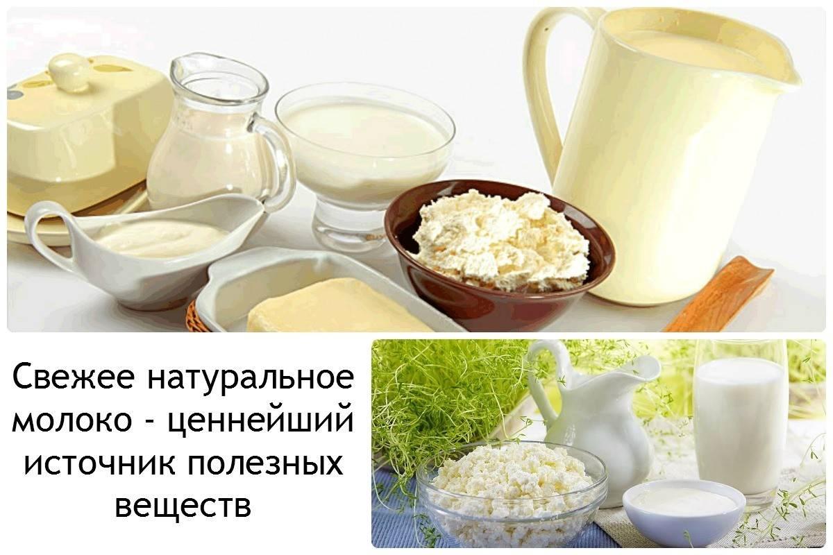 molochnye-produkty1