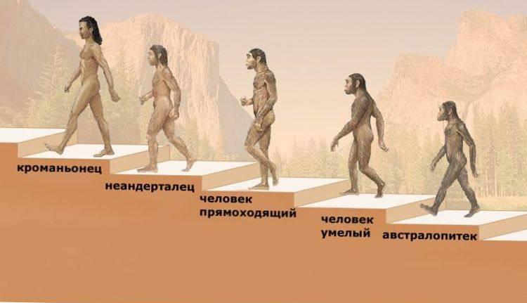 от обезьяны до кроманьонца