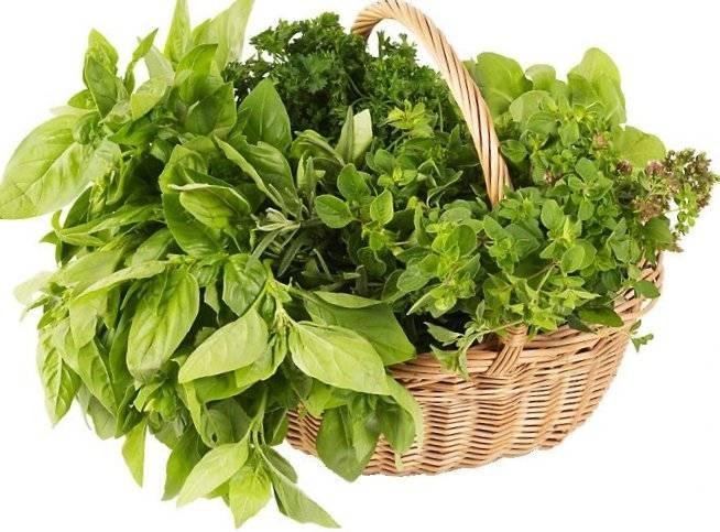 zelenj