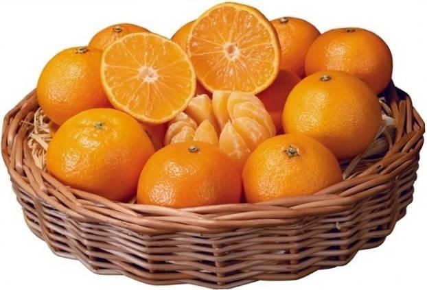 citrus-pri- prostude