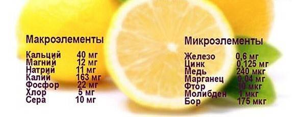 ценность лимона микро-макроэлементы