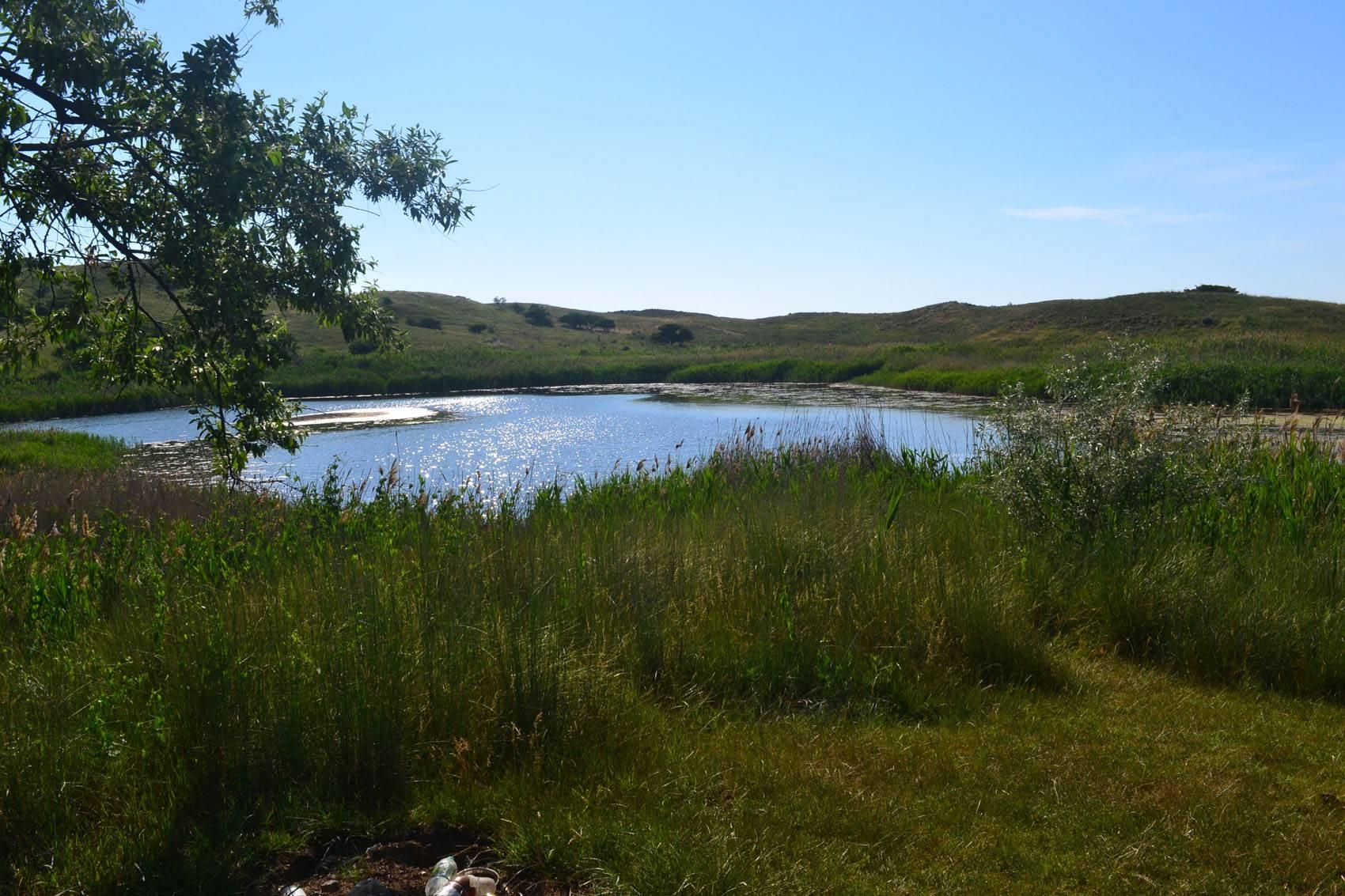 Озеро у Ильича