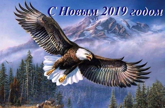 2019 год по славянскому календарю