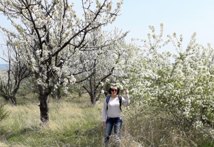 весна в природе